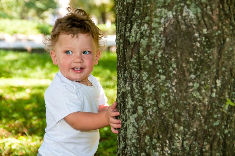 Little curly boy in a white T-shirt hugging a tree stock photography
