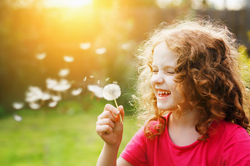 Little curly girl blowing dandelion and laughing. stock photography