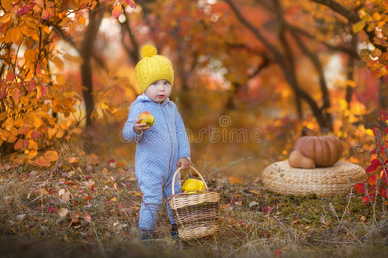 Little cute baby boy in yellow winter hat sitting on pumpkin in autumn forest alone royalty free stock photography