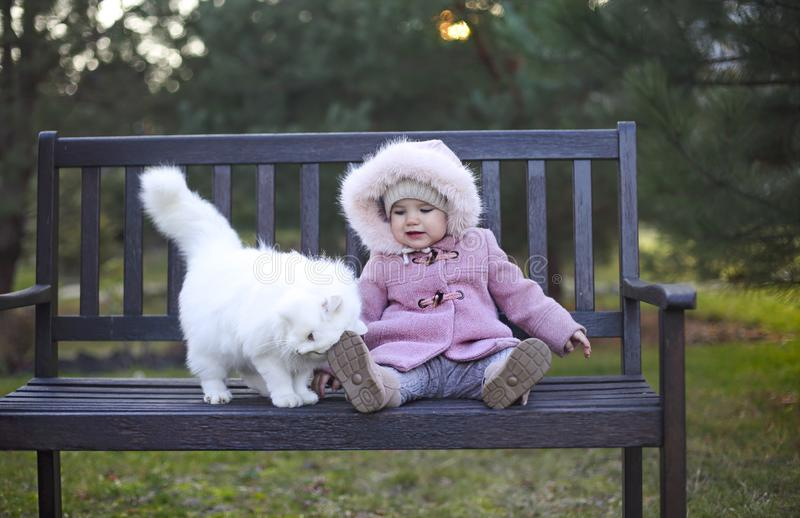 Little cute baby girl wearing autumn outfit and white cat sitting on the bench. In autumn park stock photos