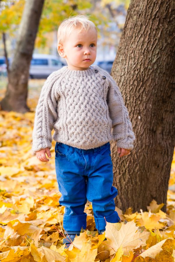 little cute baby sweater in autumn royalty free stock images