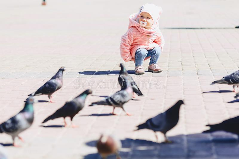Little cute baby walk on square with birds. On sunny day royalty free stock photos