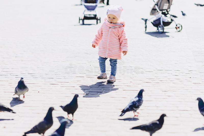 Little cute baby walk on square with birds. On sunny day stock images