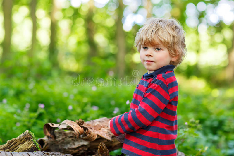 Little cute blond kid boy having fun in summer forest. royalty free stock image