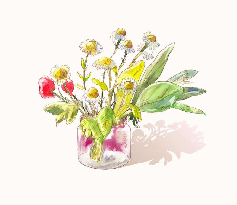 Little cute bouquet of wildflowers. Watercolor daisies and poppies. Sunny vector sketch. Light watercolor sketch of field daisies and poppies in a glass vessel royalty free illustration