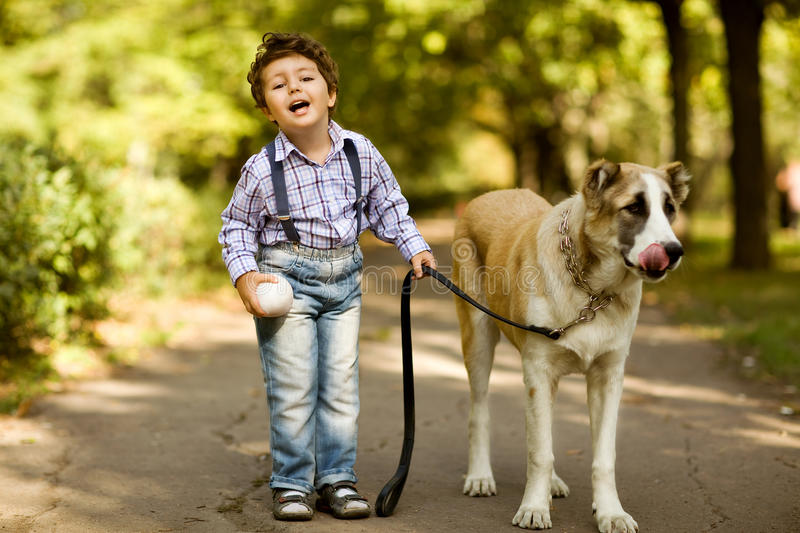 Little cute boy playing with his dog royalty free stock image