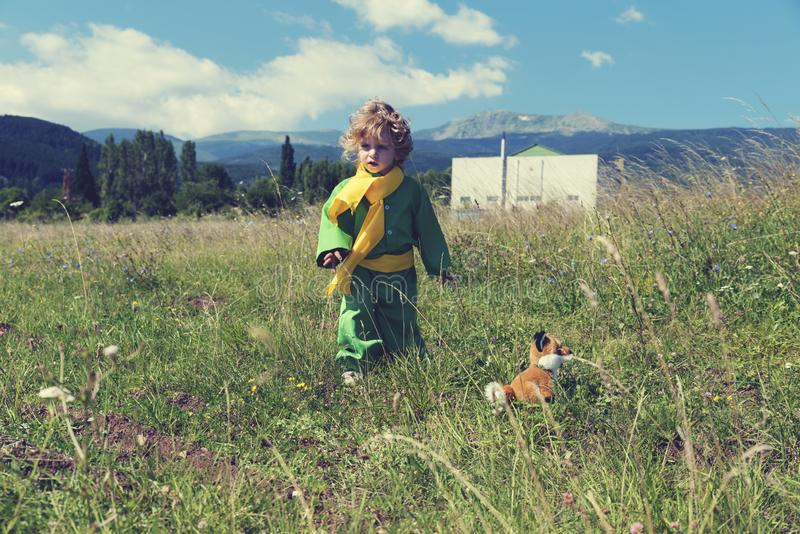 Little cute boy walking in the middle of meadow with fox toy in green clothes with yellow scarf. Selective focus royalty free stock photo
