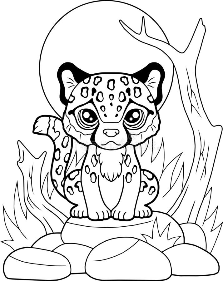 Little Cute Cheetah Sitting On Stones Coloring Book Funny Illustration Stock Vector Illustration Of Book Predator 186728720