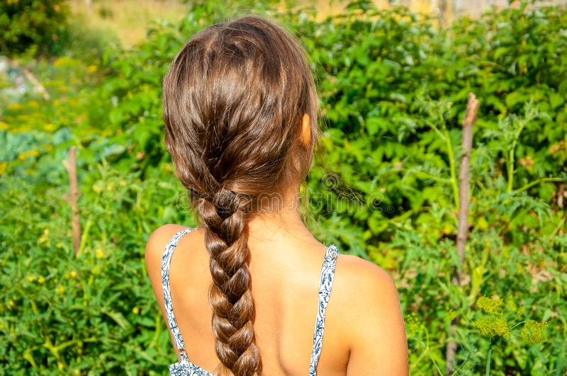 Little cute girl with a long braid, eating a cucumber plucked from the garden royalty free stock images