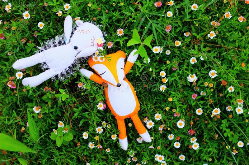 little cute hedgehog and fox sleeping in the garden royalty free stock photos