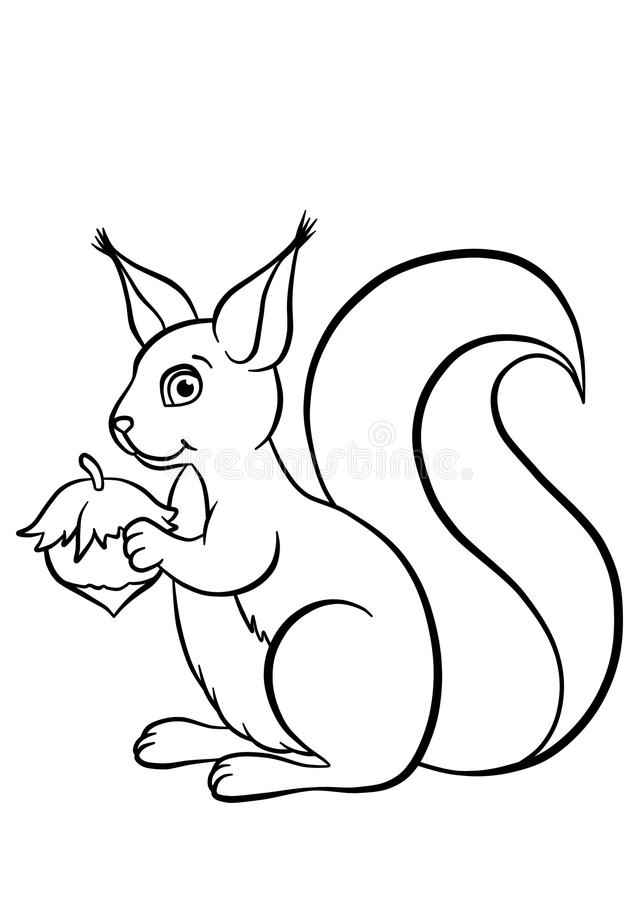 Free Little Cute Squirrel With Huzelnut Stock Photo - 51374750