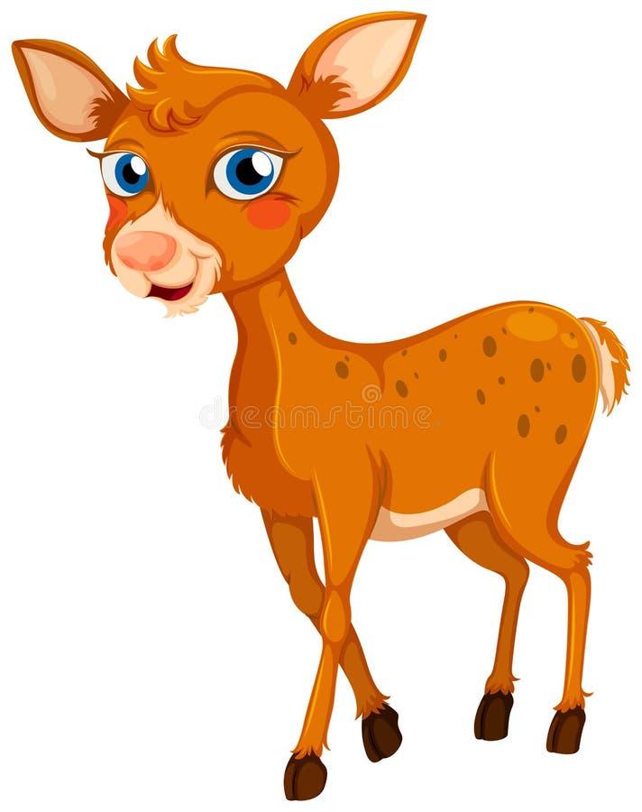 A little deer. Illustration of a little deer on a white background stock illustration