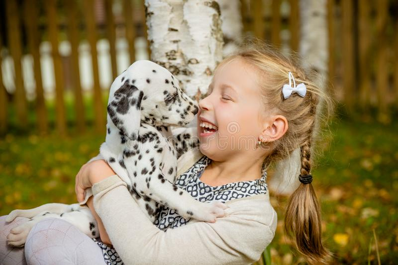 Little dog with happy owner spend a day at the park playing and having fun.Funny photo of laughing girl,she hugging and royalty free stock images