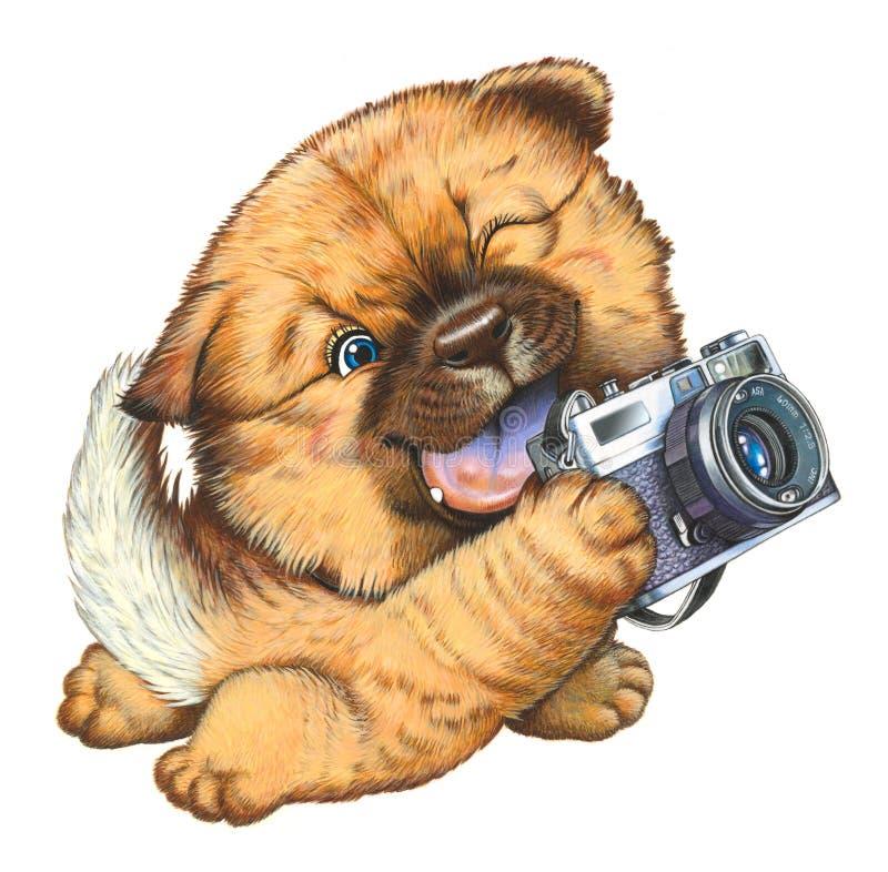 Download A Little Dog Holding A Camera Stock Illustration - Image: 25252307