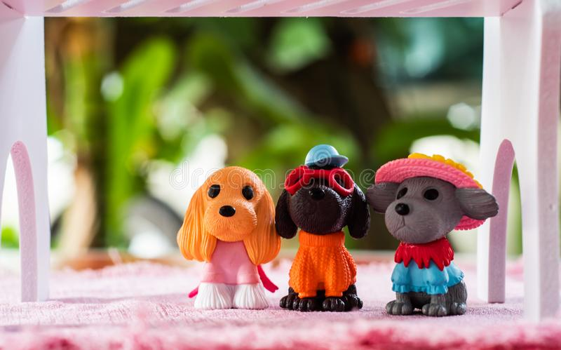 Little Dogs toys , cutes decorations in dogs cafe in Chiangmai province northern of Thailand. Dogs toys cutes decorations in dogs cafe in Chiangmai province stock photos
