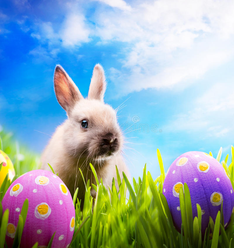 Little Easter bunny and Easter eggs on green grass stock photo