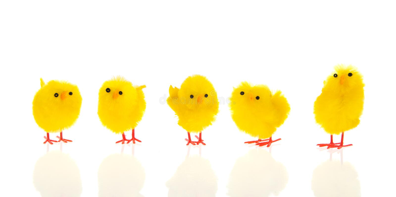 Download Little easter chicks stock image. Image of nobody, isolated - 28885143