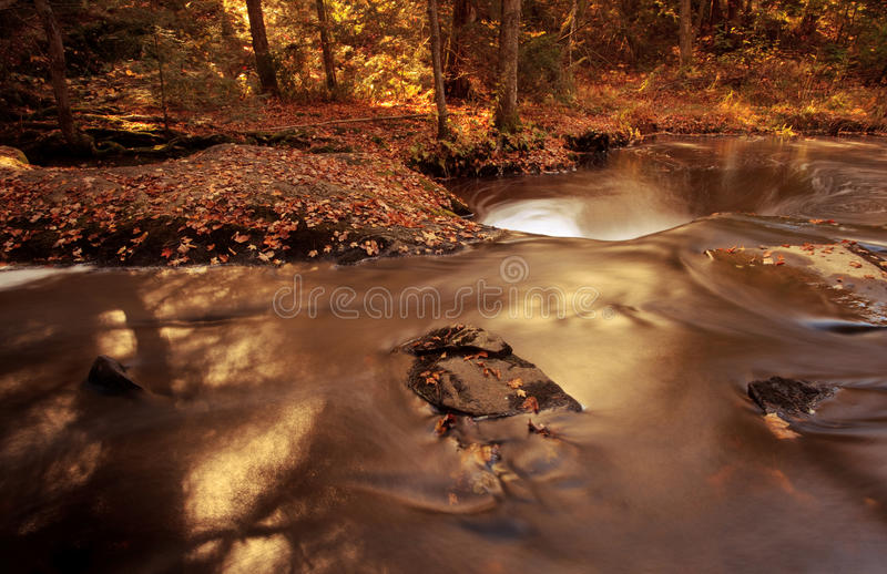 Little Fall Color River stock images