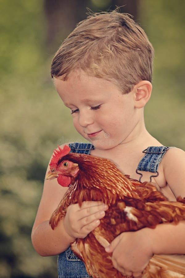 Little farm boy holding red chicken. Boy eating sandwich fishing bridge stock image
