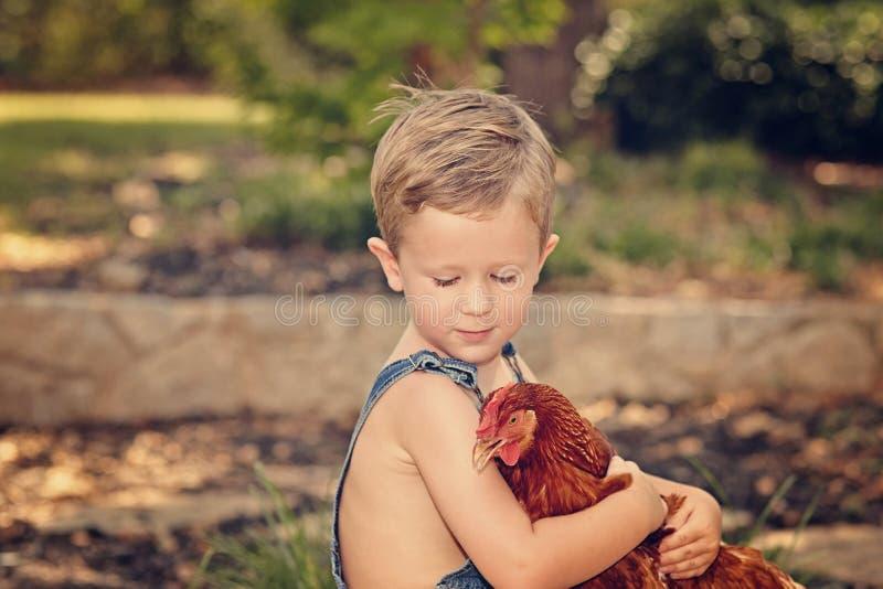Little farm boy holding red chicken. Boy eating sandwich fishing bridge royalty free stock photography