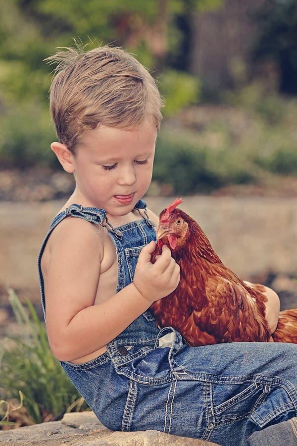 Little farm boy holding red chicken. Boy eating sandwich fishing bridge stock images