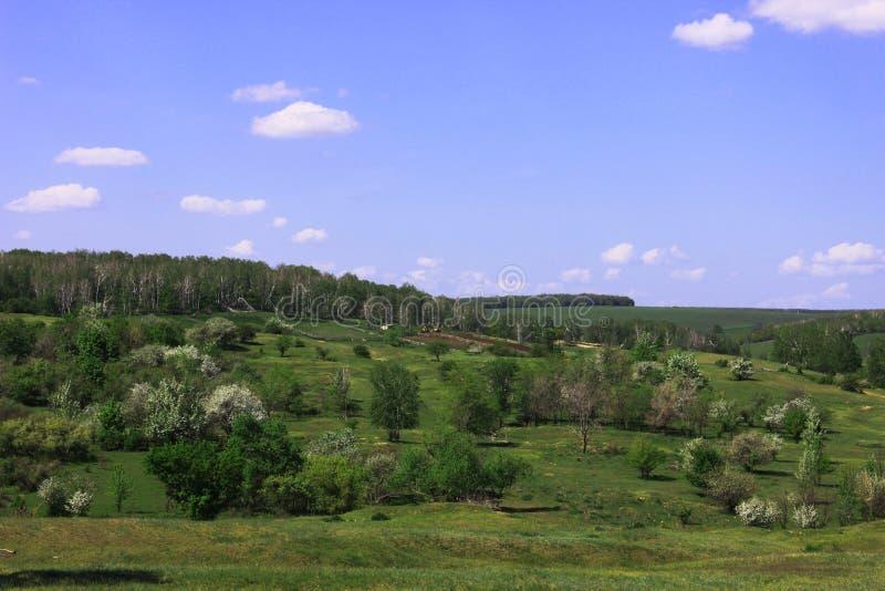 Little farm on the hillside stock photos