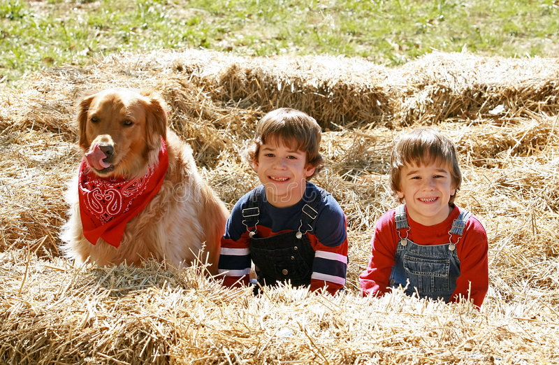 Little Farmers with Dog royalty free stock image