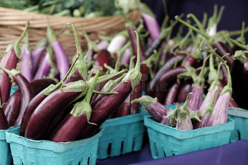 Little Fingers Eggplant at Farmers Market royalty free stock image