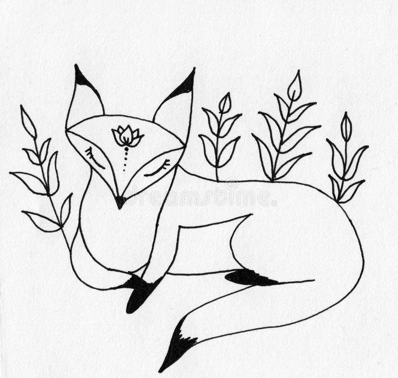 Little fox Zen with twigs stock images