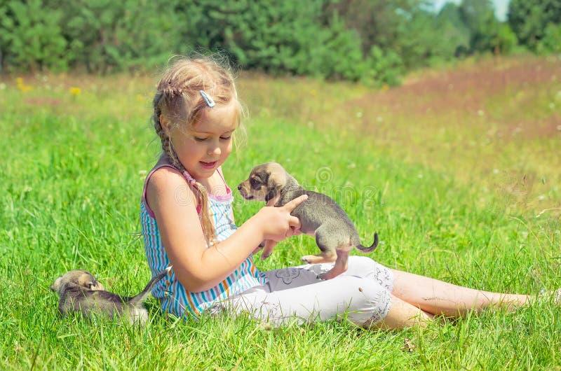 Little Friends stock image