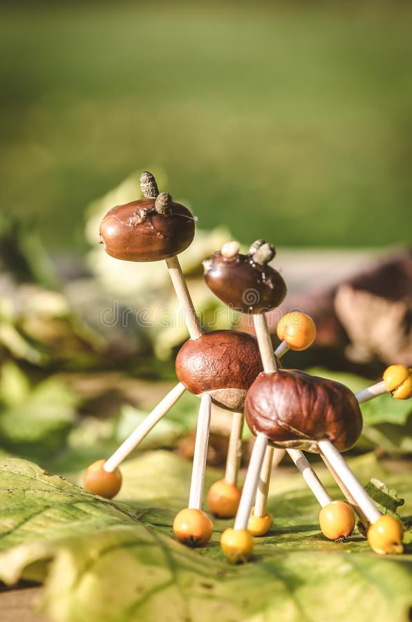 Autumn chestnut creative funny figures royalty free stock images