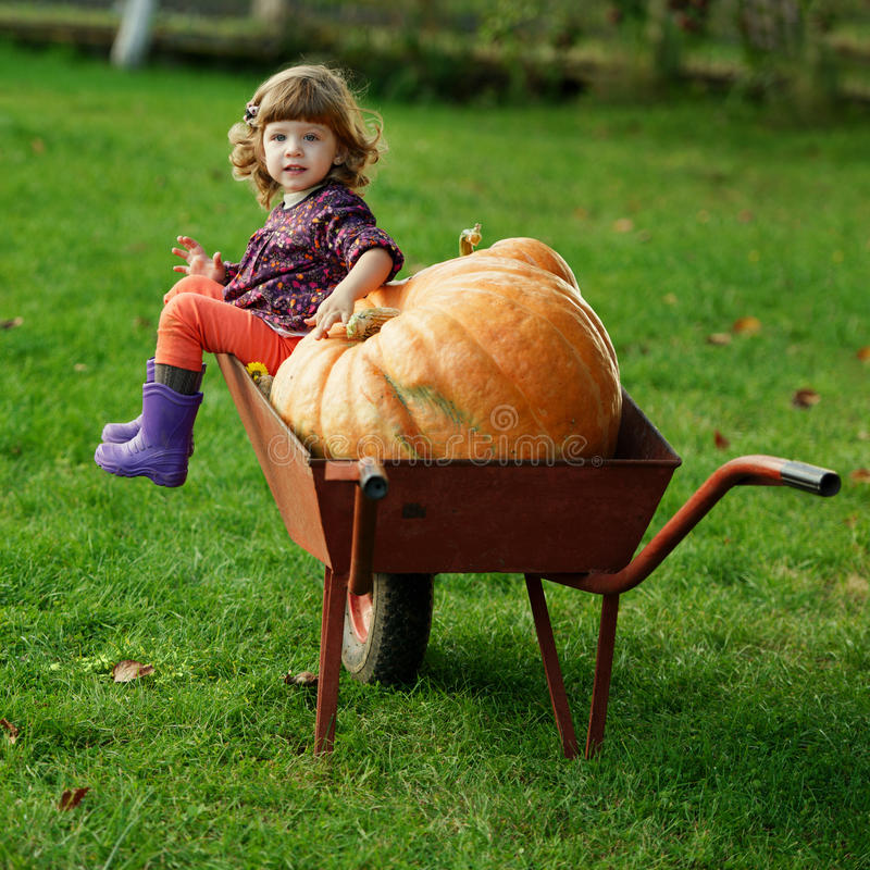 Little funny girl with pumpkins. In the garden stock photos
