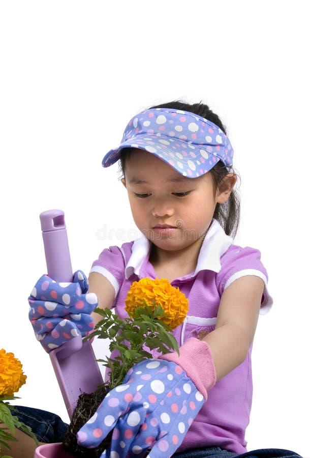 Download Little Gardener 004 stock photo. Image of gloves, spring - 2326928