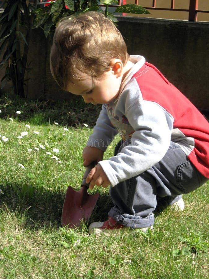 Little gardener. A little baby boy works in the garden stock image