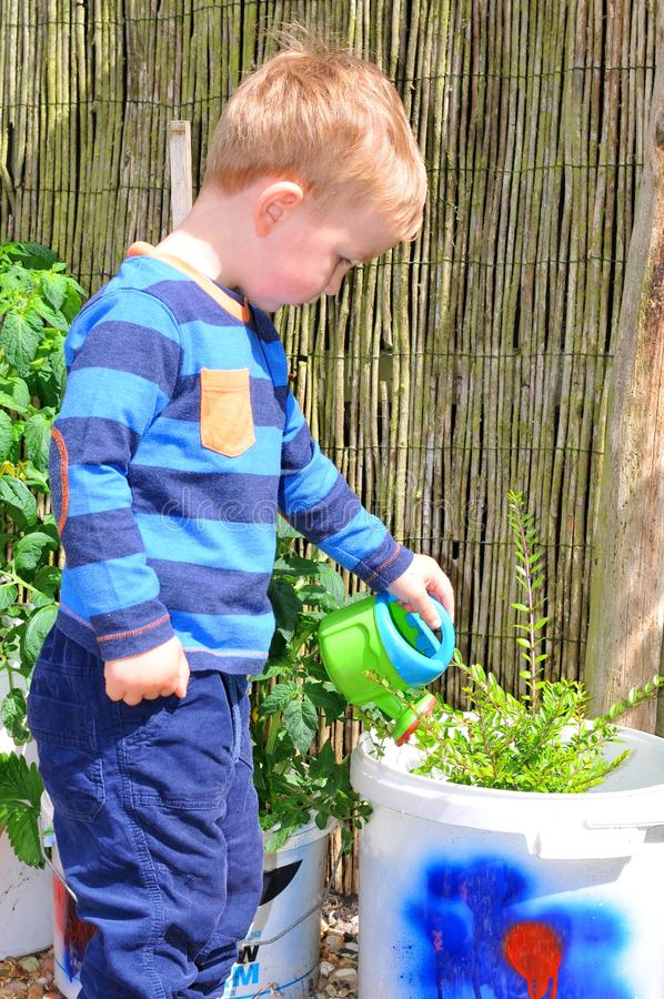 Little gardener. Portrait of a boy gardening in the countryside stock photography