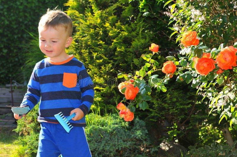 The little gardener. Portrait of a child gardening stock photography