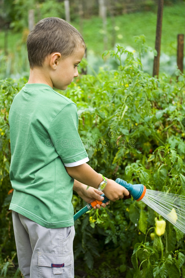 Little Gardener At Work Stock Photos