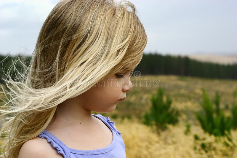 Little girl. A little girl in a pine plantation, Australian landscape stock image