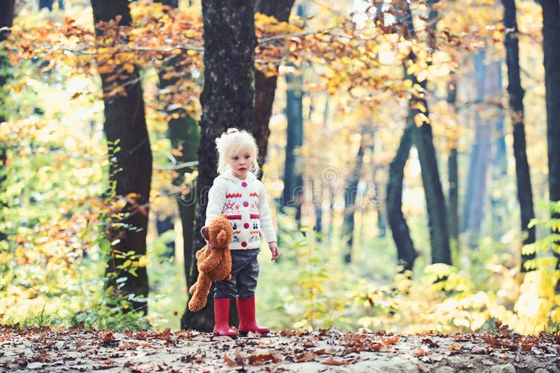 Little girl in autumn forest. Child with teddy bear in fairy tale woods. Kid with toy enjoy fresh air outdoor. Childhood. Game, fun, active rest and activity royalty free stock photo