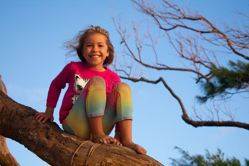Little Girl Balances on a Tree Branch. A little girl balances herself on a tree branch in the morning light royalty free stock images