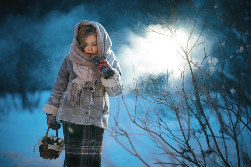 Little girl with basket goes and looks for the first flowers under the snow in forest in winter royalty free stock image