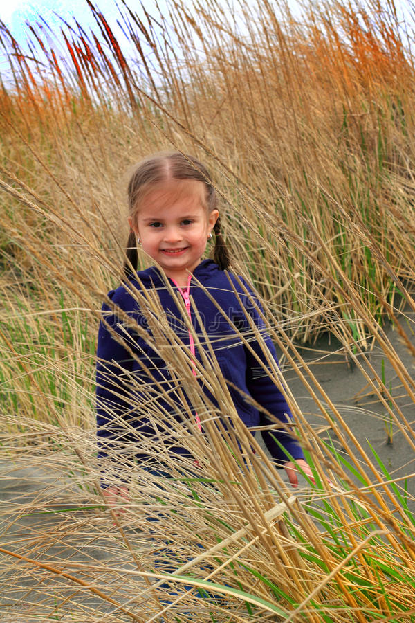 Little girl in beach grass royalty free stock images