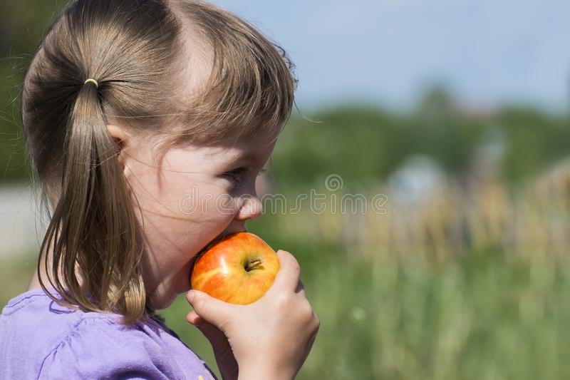 Little girl bites a ruddy apple royalty free stock photos