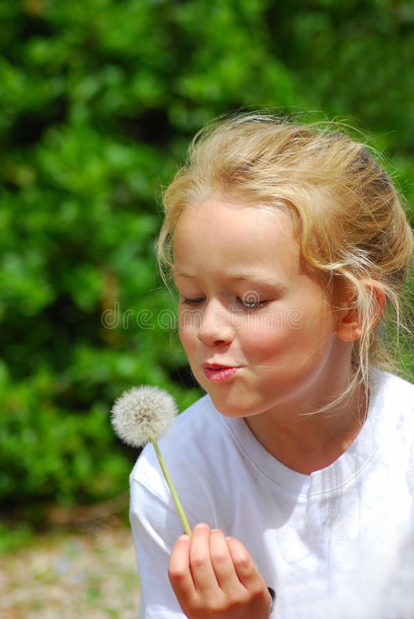 Little girl blowing blowball - Dandelion. Outdoor portrait of a cute Caucasian blond girl child with happy smiling facial expression holding a Dandelion flower stock photography