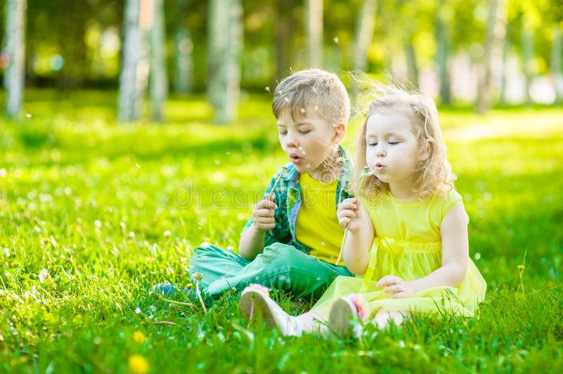 Little girl and boy blowing dandelion together royalty free stock photos