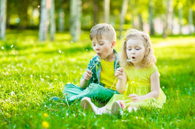 Little girl and boy blowing dandelion together royalty free stock photo