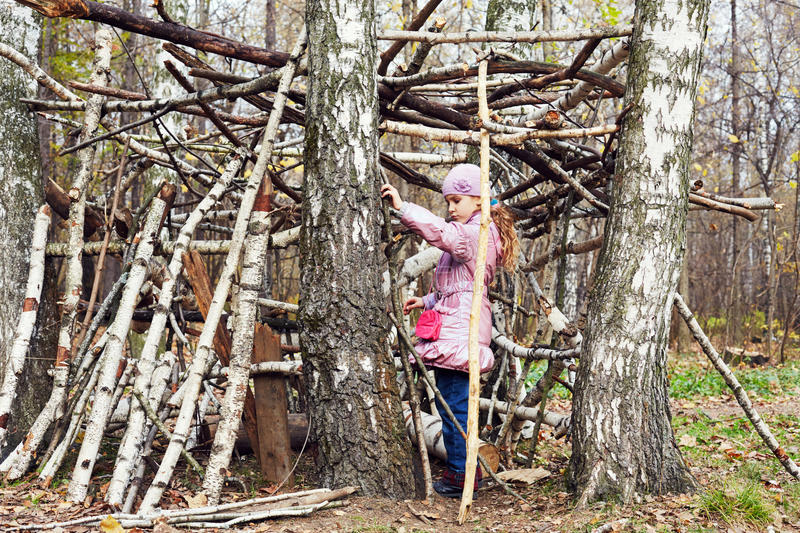 Little girl builds hut between birches. In autumn park royalty free stock images