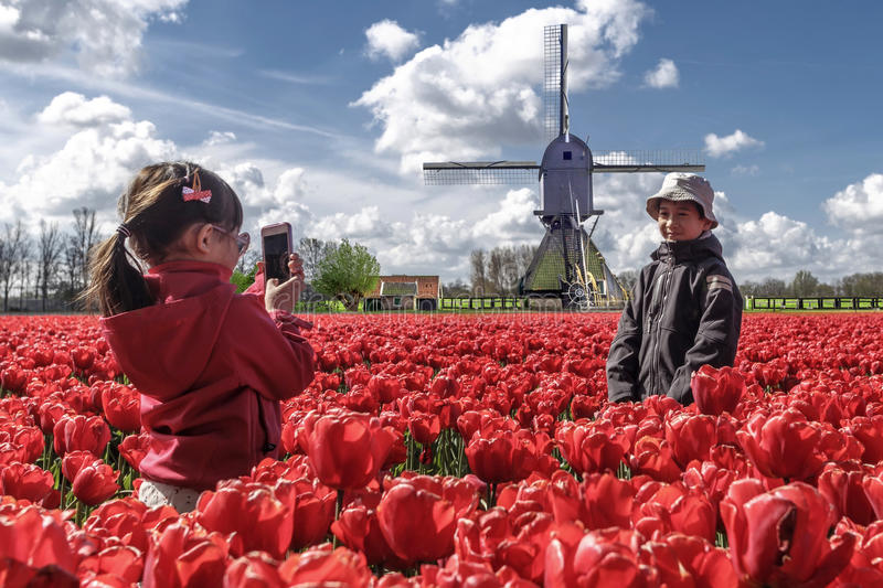 Little girl capturing picture of her brother. Little asian girl captures picture of her brother in the tulip bulb farm at lisse, keukenhof, netherlands