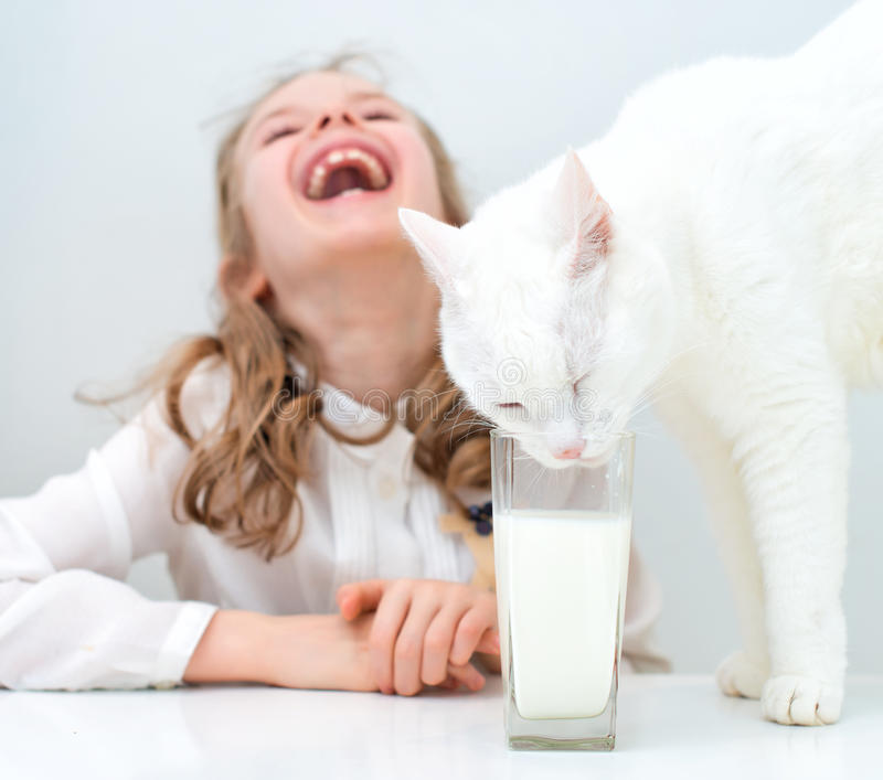 Little girl with cat. Little girl laughing while cat drinking milk from glass stock photos