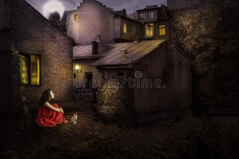 Little girl with a cat on the roof of the house stock photo